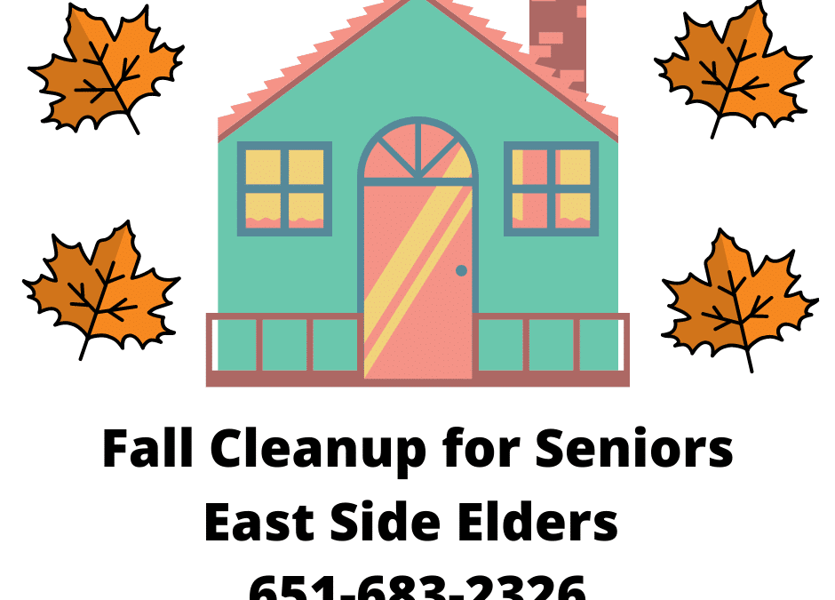 Fall Cleanup for Seniors